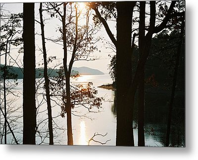 Metal Print featuring the photograph Gentle Touch by Kicking Bear  Productions