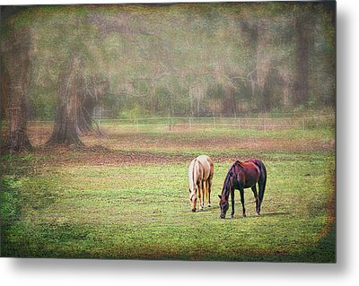 Metal Print featuring the photograph Gently Grazing by Lewis Mann