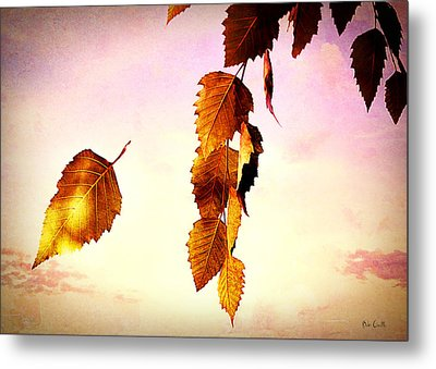 Gently September Metal Print by Bob Orsillo