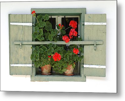Geranium Window Metal Print by Frank Tschakert