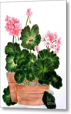 Geraniums In Clay Pots Metal Print by Terri Mills