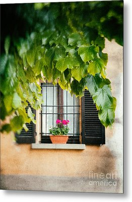 Metal Print featuring the photograph Geraniums On Windowsill by Silvia Ganora