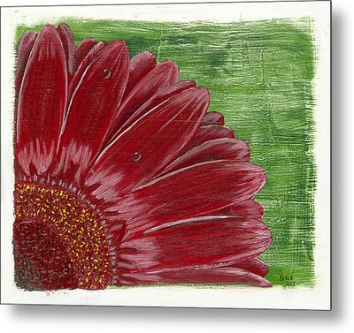 Gerber Daisy- Red Metal Print by Susan Schmitz