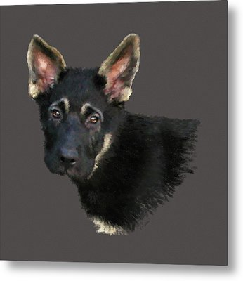 German Shepard Puppy Metal Print