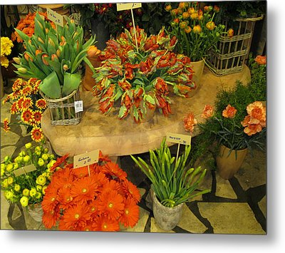 Germany Orange Metal Print by Sharon Costa