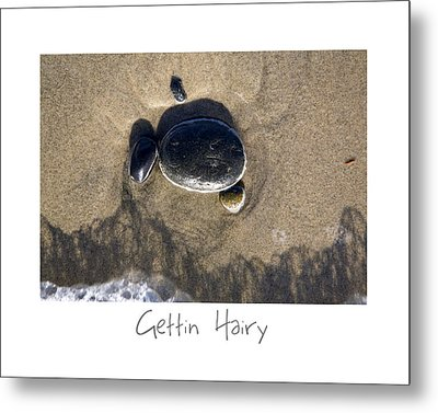 Gettin Hairy Metal Print by Peter Tellone