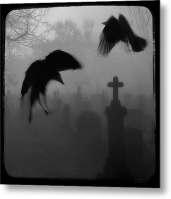 Ghost Crows Metal Print by Gothicrow Images