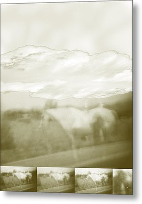 Ghost Horse Colorado Metal Print by Ann Tracy