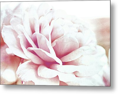 Metal Print featuring the digital art Ghost Of Roses Past by Margaret Hormann Bfa