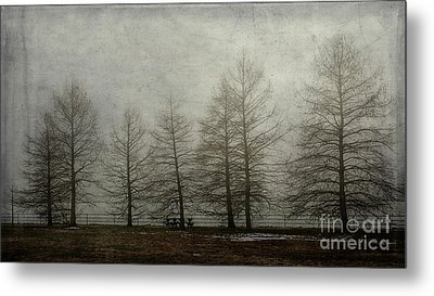 Ghost Trees Metal Print by Terry Rowe