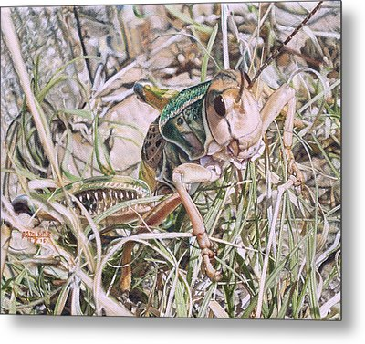 Metal Print featuring the painting Giant Grasshopper by Joshua Martin