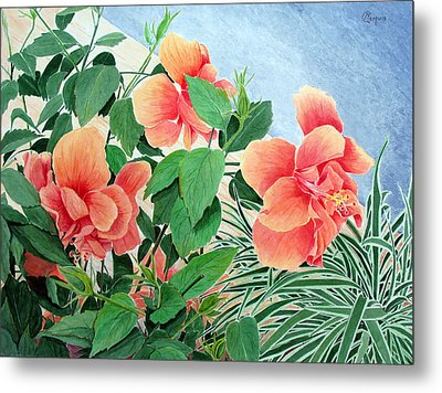Giant Hibiscus Metal Print by Colleen Marquis