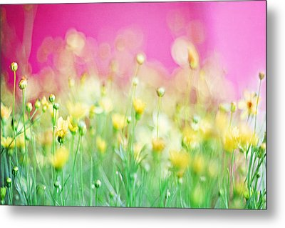 Giddy In Pink Metal Print by Amy Tyler