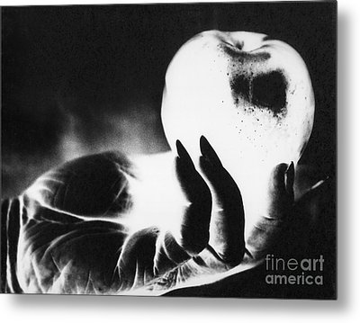 Gift  For Snow White Metal Print by Linda Drown