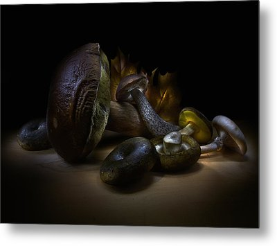 Metal Print featuring the photograph Gifts Of September by Alexey Kljatov