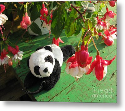 Metal Print featuring the photograph Ginny Under The Red And White Fuchsia by Ausra Huntington nee Paulauskaite