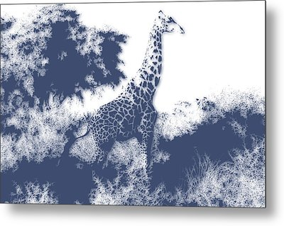 Giraffe Metal Print by Joe Hamilton