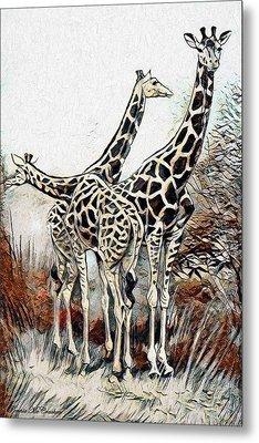 Metal Print featuring the digital art Giraffes by Pennie McCracken