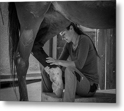 Girl Treats Horse Metal Print by Sebastian Graf