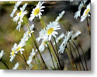 Glacier Wildflowers Metal Print by Marty Koch