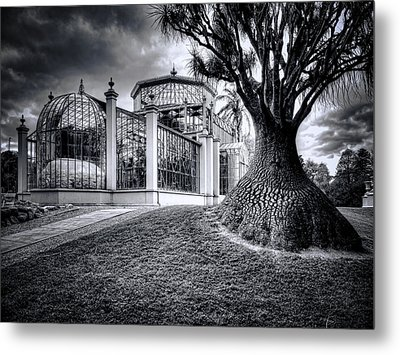 Glasshouse And Tree Metal Print by Wayne Sherriff