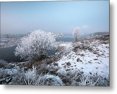 Metal Print featuring the photograph Rannoch Moor Winter Mist by Grant Glendinning