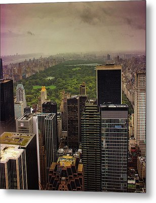 Gloomy Central Park Metal Print by Martin Newman