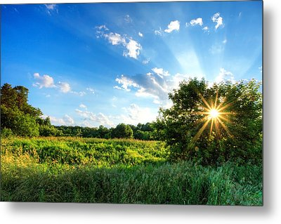 Metal Print featuring the photograph Glorious Landscape by Anthony Rego