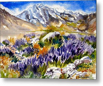 Metal Print featuring the painting Glorious Lupine by Pat Crowther