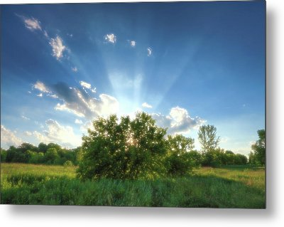 Metal Print featuring the photograph Glorious Sky - A by Anthony Rego