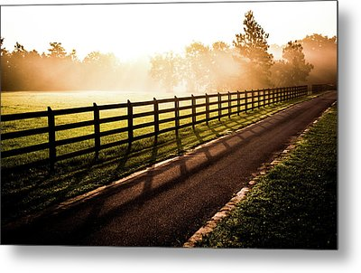 Metal Print featuring the photograph Glowing Fog At Sunrise by Shelby Young