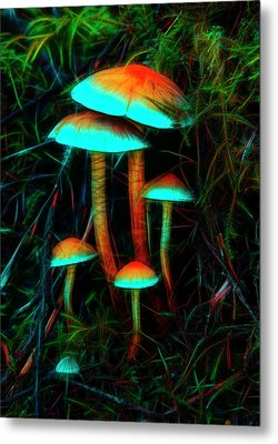 Metal Print featuring the photograph Glowing Mushrooms by Yulia Kazansky