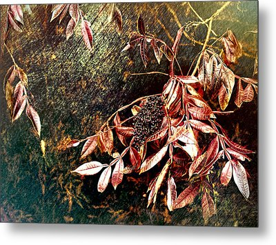 Glowing Sumac With Berries Metal Print by Bellesouth Studio
