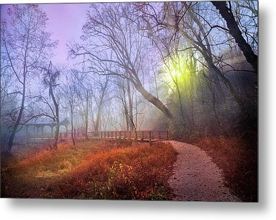 Metal Print featuring the photograph Glowing Through The Trees by Debra and Dave Vanderlaan