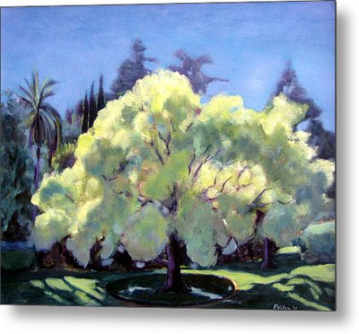 Glowing Tree Metal Print by Richard  Willson