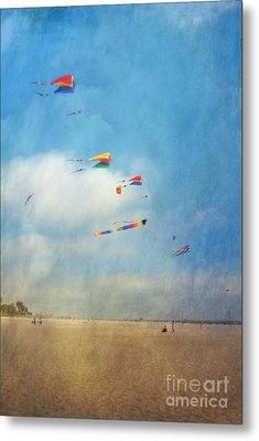 Metal Print featuring the photograph Go Fly A Kite by David Zanzinger