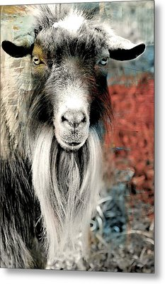 Goatee Metal Print