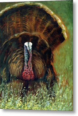 Gobbler In The Grass Metal Print by Suzanne McKee