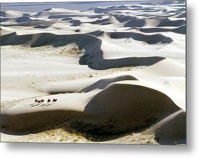 Gobi Desert Metal Print by Ria Novosti