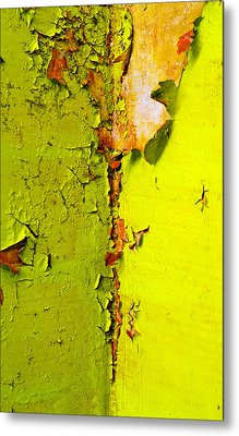 Going Green Metal Print by Skip Hunt