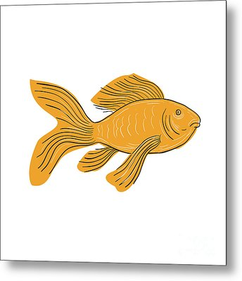 Gold Butterfly Koi Swimming Drawing Metal Print