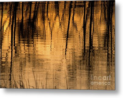 Golden Abstract Metal Print by Shevin Childers