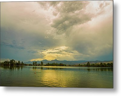 Metal Print featuring the photograph Golden Afternoon by James BO Insogna
