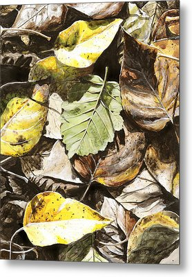 Metal Print featuring the painting Golden Autumn - Talkeetna Leaves by Karen Whitworth