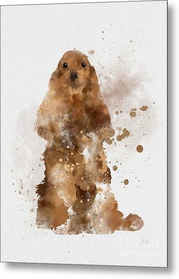 Golden Cocker Spaniel Metal Print