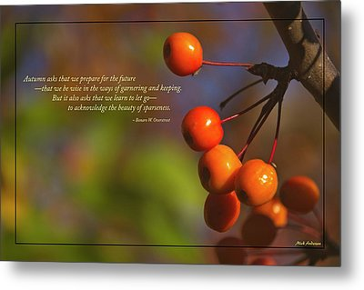 Golden Crab Apples In The Sun Metal Print by Mick Anderson