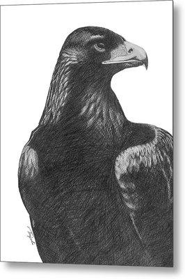 Golden Eagle Metal Print by Lawrence Tripoli
