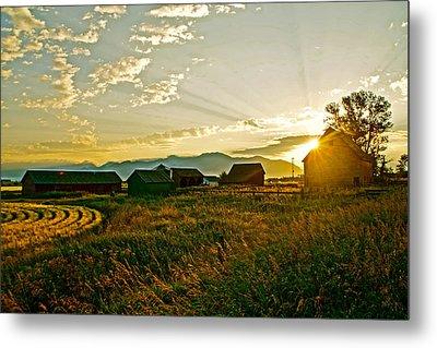 Golden Farm Metal Print by Darren Cole Butcher