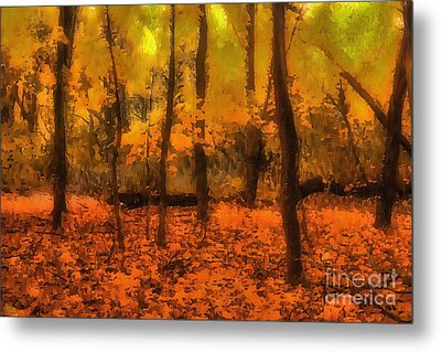 Golden Forest Metal Print by Jeff Breiman