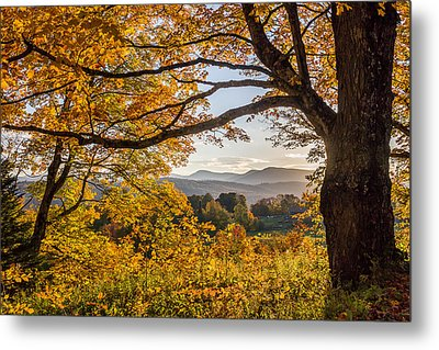 Vermont Framed In Gold Metal Print